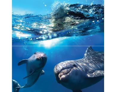 Dolphins Панно 50x50 Ceramica Classic